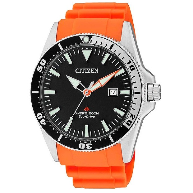 Citizen BN0100-18E Promaster Фото 1