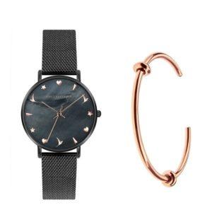 Наручные часы Emily Westwood EWS024 Dark Seashell