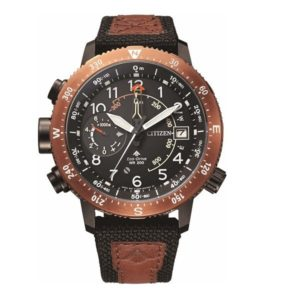 Citizen BN4049-11E Promaster Фото 1