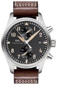 Наручные часы IWC IW387808 фото 1