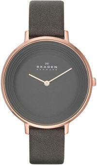 Женские часы Skagen SKW2216 фото 1