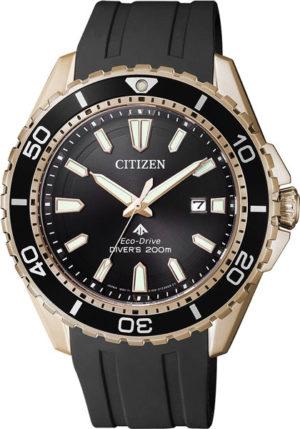 Citizen BN0193-17E Promaster