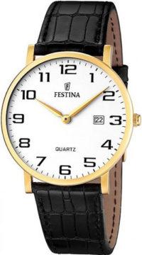 Мужские часы Festina F16478/1 фото 1