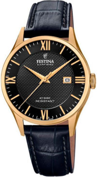 Мужские часы Festina F20010/4 фото 1