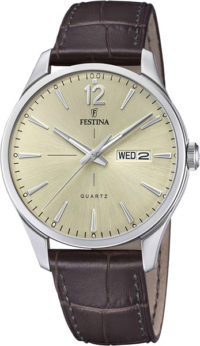 Мужские часы Festina F20205/1 фото 1